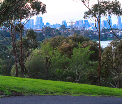 Melbourne City View from Footscray Park
