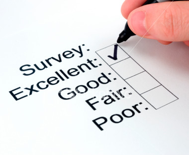survey for businesses on energy efficiency and renewable energy